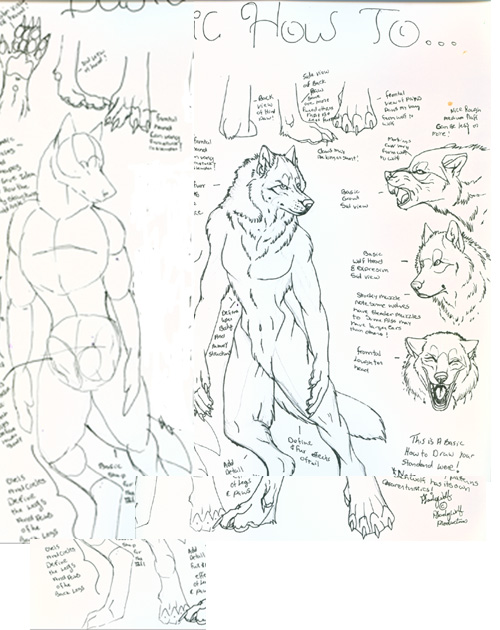How to Draw Werewolves by Pladywolf Art_tut