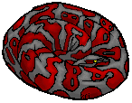 Resin--Boa--124--97--1.png